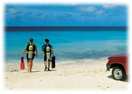 Bonaire diving: rent a truck, drive to or even onto the beach, suit up and walk into the water, enjoy your dive!