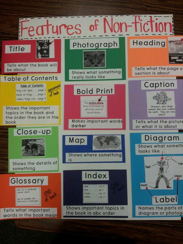 Features of non-fiction anchor chart