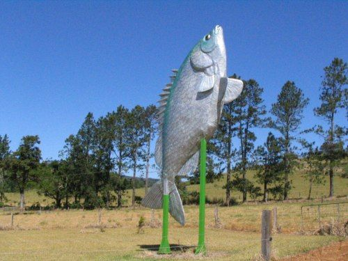 The Big Fish, just outside Tarzali Lakes, in the Atherton Tablelands.