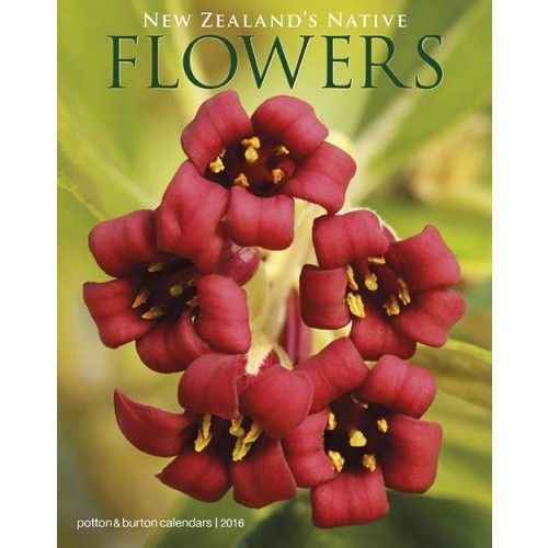 New Zealand's Native Flowers Calendar 2016