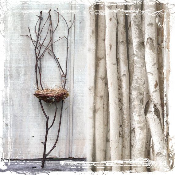 Creative Ideas For Branches As Home Decor: 245 Best Images About Tree Branch Projects On Pinterest
