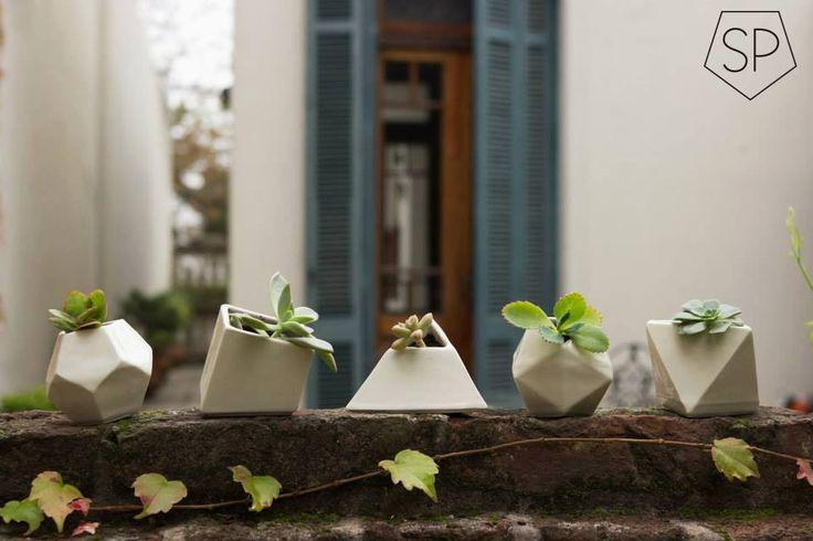 Según la geometría sagrada la presencia de cada sólido platónico en el hogar nos aporta su energía sanadora. Flor y Ari los combinan con plantas para vos.