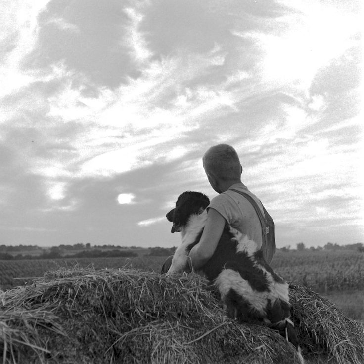 (International Day of Friendship) Boy And His Dog, Oskallsa, LA, 1945. Myron Davis—The LIFE Picture Collection/Getty Images