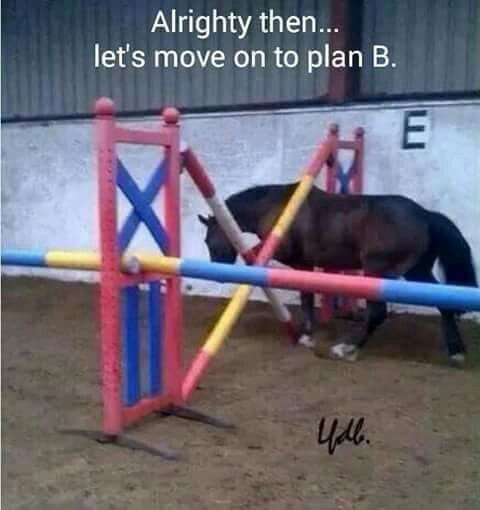 Maybe that's a new type of show jumping?  #Jupinkle