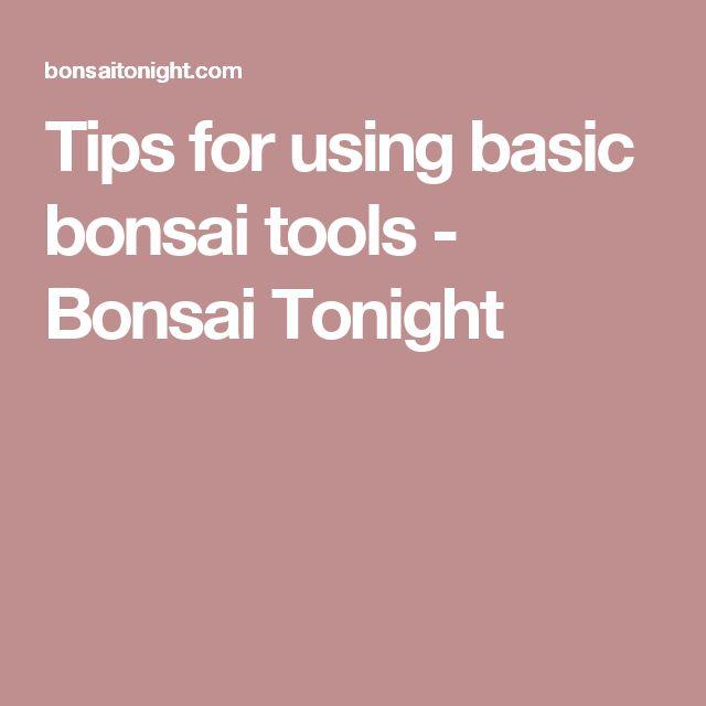 Tips for using basic bonsai tools - Bonsai Tonight