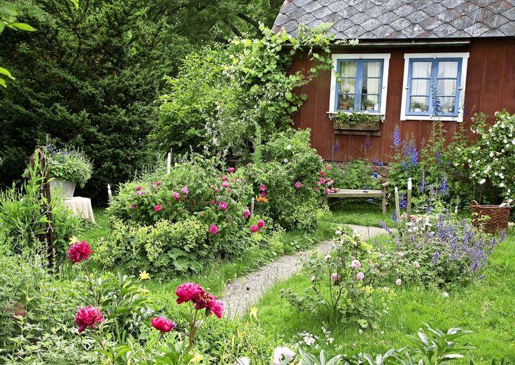 Vaikka puutarhassa estetiikka on tärkeää, se ei ole kai kuitenkaan tärkeintä. Puutarha syttyy kukoistukseensa, kun elät ja asut siellä, otat sen kodiksesi.