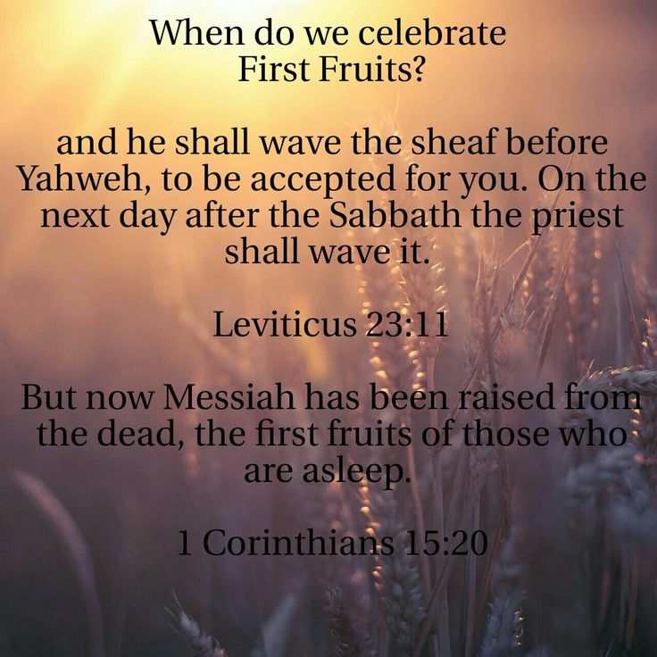 When do we celebrate First Fruits? and he shall wave the sheaf before Yahweh, to be accepted for you. On the next day after the Sabbath the priest shall wave it. Leviticus 23:11 |  But now Messiah has been raised from the dead, the first fruits of those who are asleep. 1 Corinthians 15:20