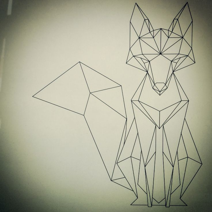 Geometric fox                                                                                                                                                     More