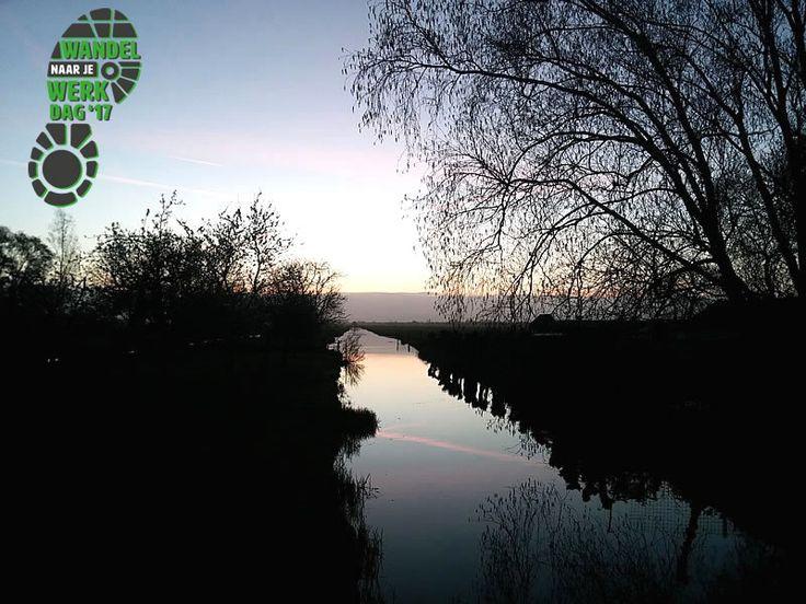 De wandelnaarjewerkdag van 2017 wordt voor mij de wandel-niet-naarjewerkdag 2017. Helaas is 56 kilometer van huis naar Den Haag dit keer veel te ver . . .