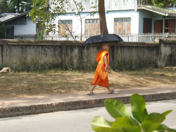 Young Monk, Luang Prabang | Flickr - Photo Sharing!