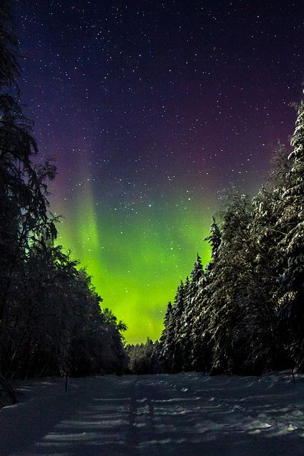 Aurora Borealis - Nurmespera, Oulu Province, Finland