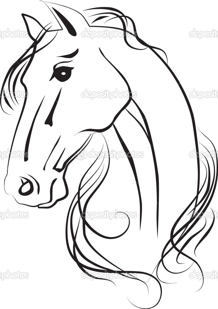 Horse line drawing - photo#17