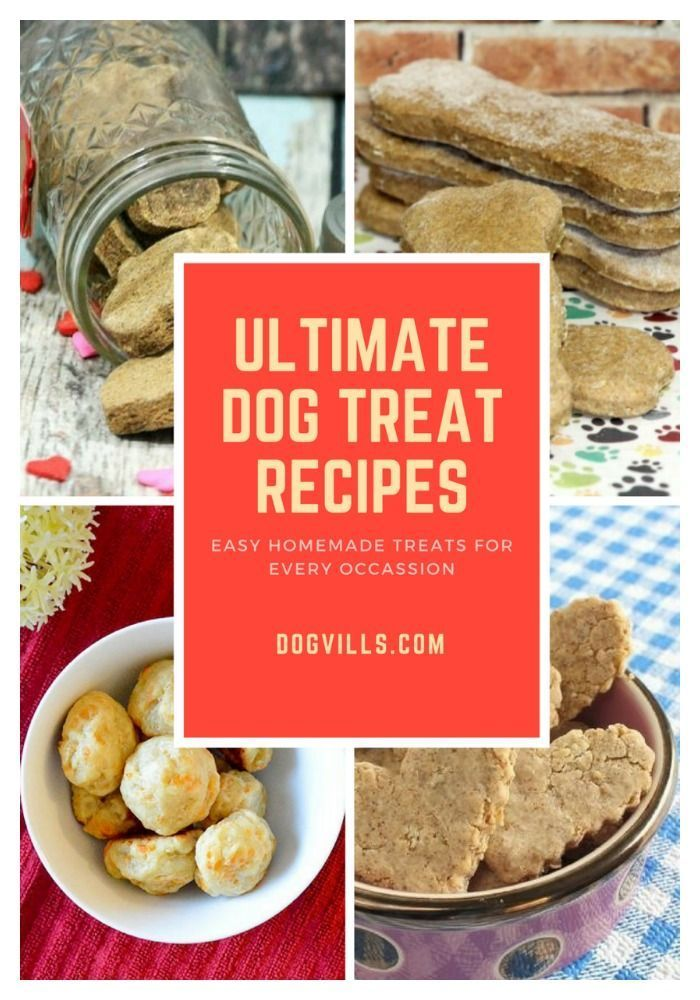 Download Our Free Recipe Ebook Featuring 10 Delicious Dog Treats