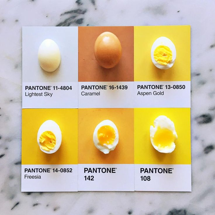 """9,186 Likes, 278 Comments - lucy litman (@lucialitman) on Instagram: """"Attempts at the perfect egg. #pantoneposts // p.s. I'm taking over for my friend…"""""""