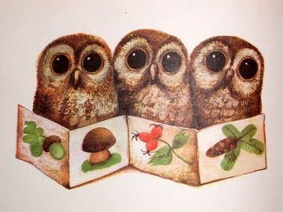 Owls by The Czech illustrator Karel Franta Pinned by www.myowlbarn.com