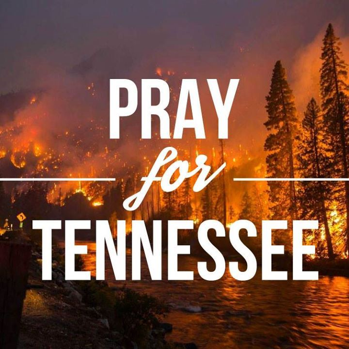 Please pray that the fires will be put out in Jesus Name.