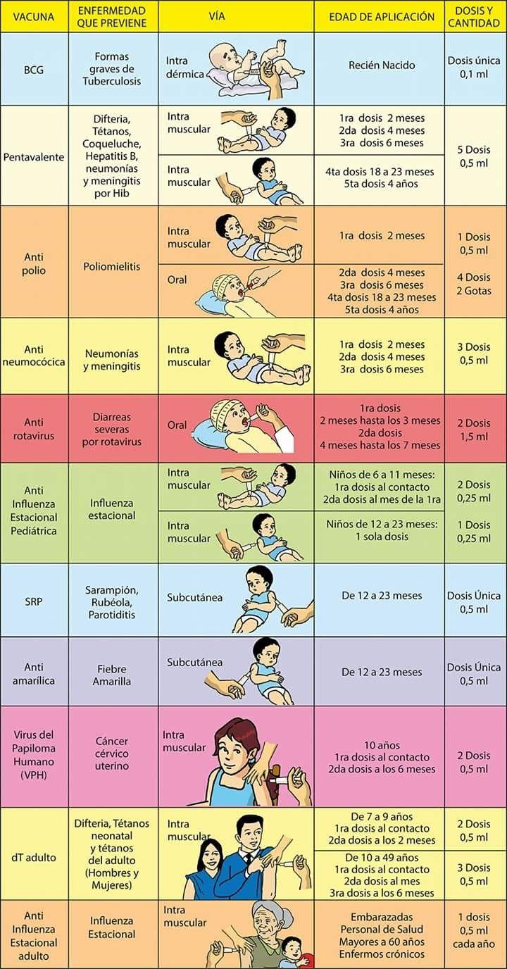 manual edenic de medicina pdf