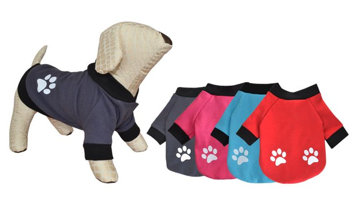 sportndog.gr product_info.php?products_id=692