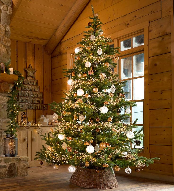 Nordmann Fir Artificial Christmas Tree | Plow This is the epitome of a child's dream Christmas Tree. Absolutely beautiful with the great height and lpiney boughs. Love it so much!! The Chriistmas bulbs remind me of Christmases long ago when I was a kid in Arlington, VA