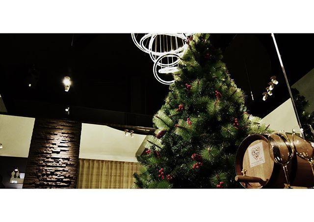 クリスマスツリーが入りました  ーーーーーーーーーーーーーーーーーー  ご予約・お問い合わせ TEL  0994-45-6300  ランチタイム 11:30〜15:00 ディナータイム 18:00〜22:00  食べログでのネット予約も可能です!  #鹿児島 #肉#シェフ#フレンチ#kagoshima #鹿屋#aniversary # 記念日#kanoya#大隅#おしゃれ#ディナー #ワイン#viande #vin #course #dinnerdate #大隅野菜 #themodernclub #モダン#モダンクラブ #料理#レストラン#restaurante#おいしい #wedding#クリスマス #christmas