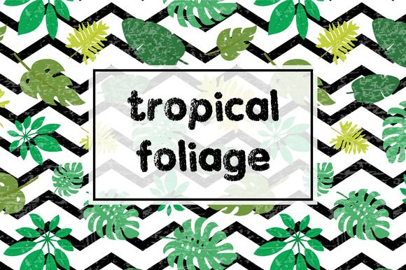 Tropical foliage by Alla_Ri_Shop on @creativemarket