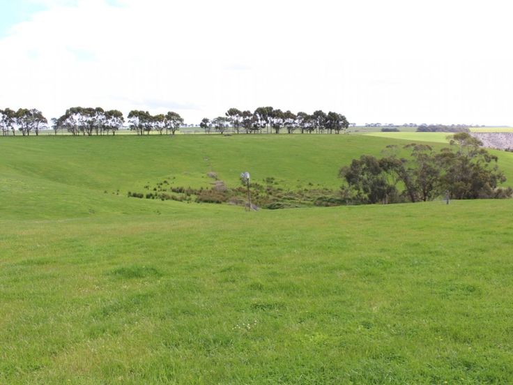 A selection of highly productive parcels of agricultural land!  #Victoria #Irrewillipe #ForSale #FarmProperty #RealEstate
