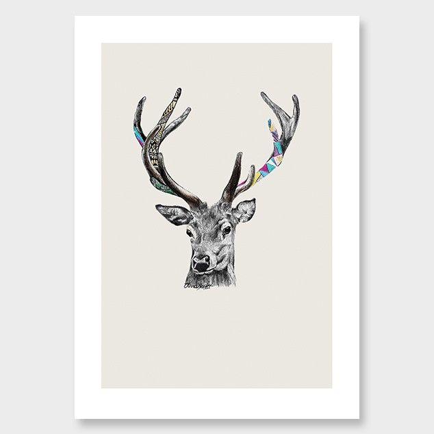 Stags Head Art Print by Olivia Bezett - Giclee Prints NZ Art Prints, Art Framing Design Prints, Posters & NZ Design Gifts | endemicworld