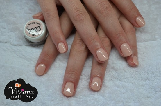 Nude | Bio Sculpture Gel