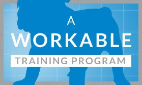 A Workable Training Program: A week by week training schedule for a new puppy