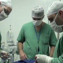 Hospital Veterinário Público UNIDADE ZONA LESTE – Rua Serra de Japi, 168 (próximo à estação do metrô Carrão)