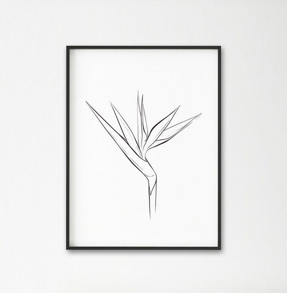 Bird Of Paradise Plant Print Tropical Flower Decor Plants Wall Art Modern Art Minimalist Art Bla In 2020 Birds Of Paradise Plant Flower Drawing Bird Of Paradise Tattoo