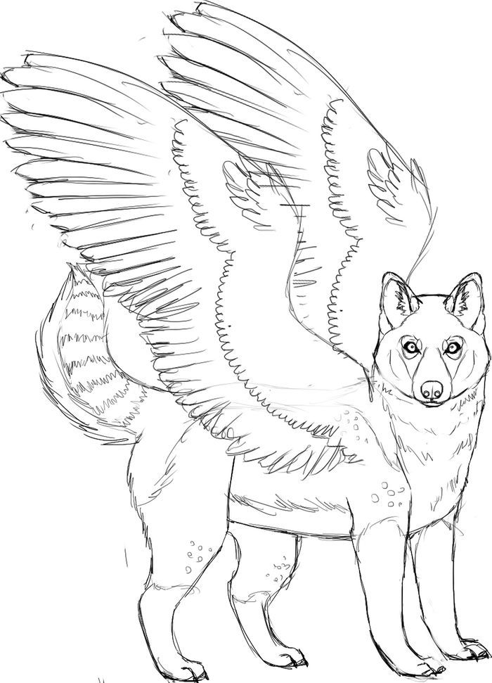 Husky Coloring Pages Pdf Free Coloring Sheets Cute Husky Puppies Puppy Coloring Pages Cute Husky
