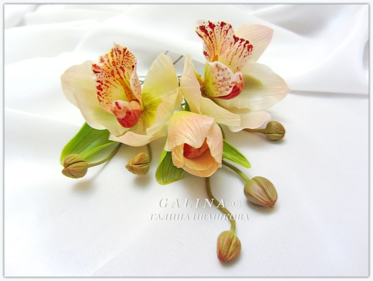 Шпильки Орхидеи шампань - крем. Холодный фарфор.