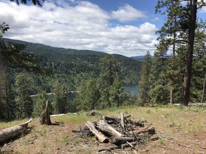 Mineral Ridge is a well maintained and signed 2.5 mile loop with an amazing view of Beauty bay and Wolf Lodge bay of Coeur d'Alene Lake.