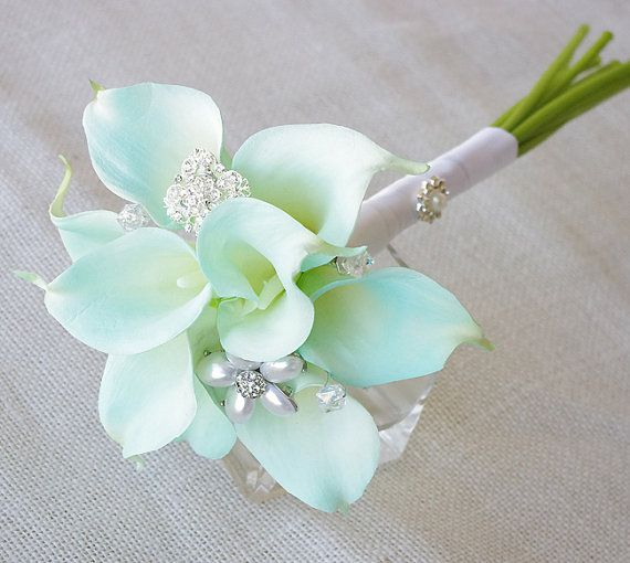 Tiffany Mint Blue Calla .  not sure what I think about these, they are the only mint flowers I can find.  might be pretty  with one or three mixed in the bunch.  they do make pretty boutonnieres