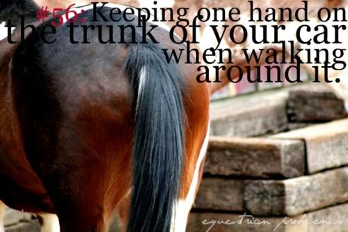 Equestrian Problem #56 - Keeping one hand on the trunk of your car when walking around it... So guilty.