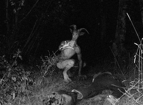 A possible New Jersey Devil sighting caught on film?
