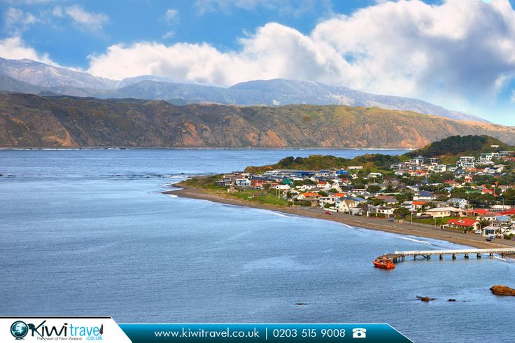 Oriental Bay, New Zealand:    |    #newzealand #picoftheday #beautiful #photo #like #travelbook #travelphotography #flights #travel #bestflightoffers #nz #kiwitravel #flightstonewzealand #cheapflights #cheapflightstonewzealand #travelagents #travelagentsinuk   |    New Zealand #TravelExperts: http://www.kiwitravel.co.uk/