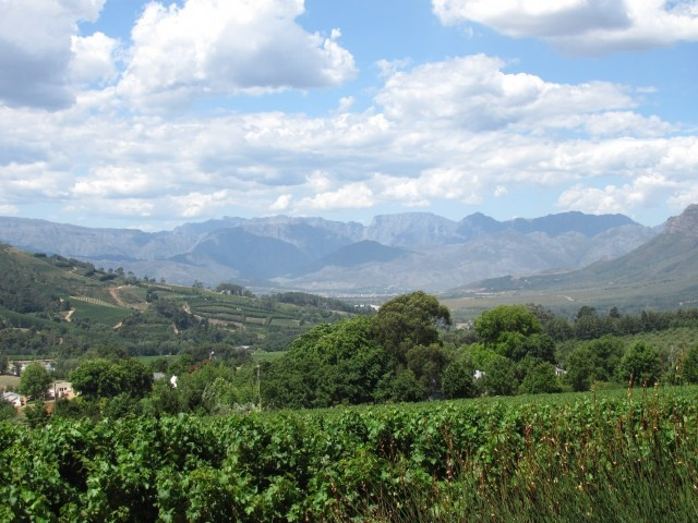 wine country- franschhoek, south africa