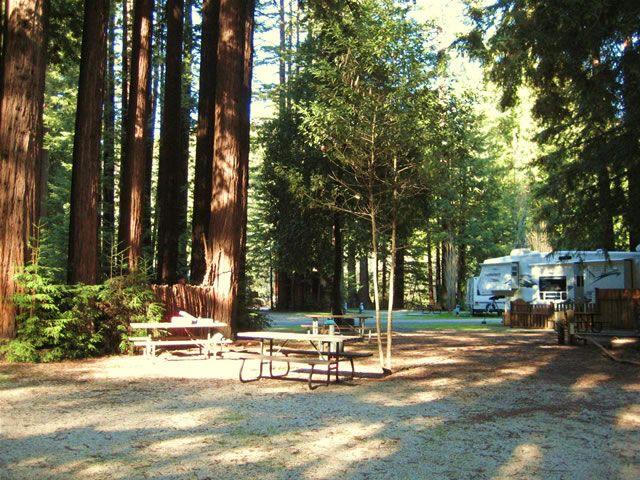 Smithwoods RV Park Felton CA