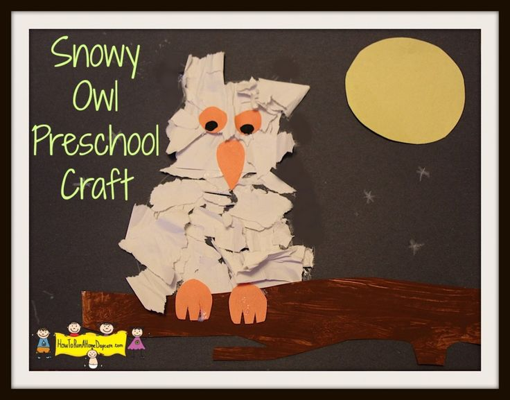 1000+ ideas about Owl Preschool on Pinterest | Fall crafts for ...