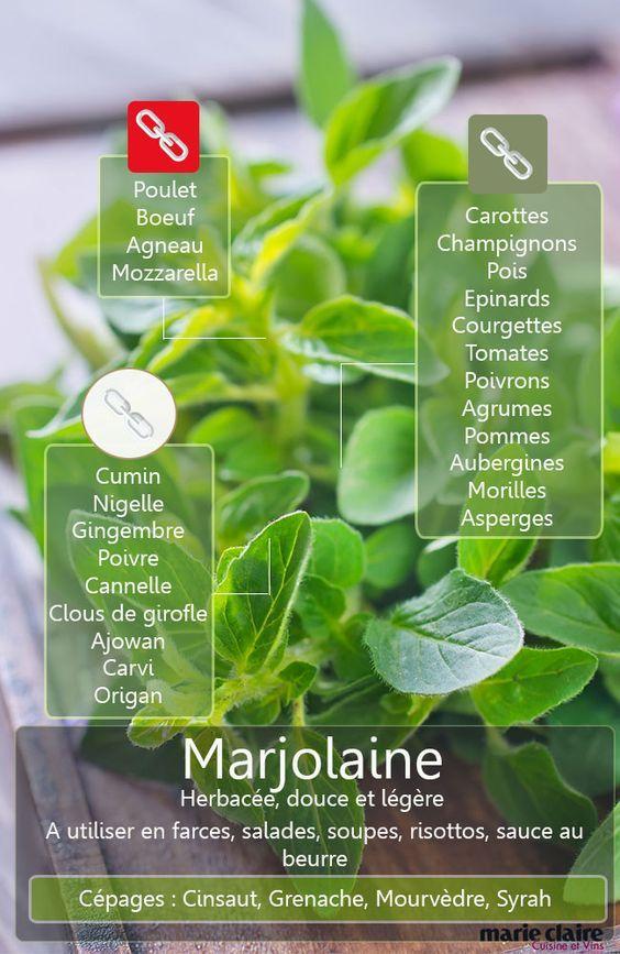 COMMENT UTILISER LA MARJOLAINE EN CUISINE La marjolaine appartient à la belle famille aromatique des herbes de Provence, elle a ce parfum de garrigue enchanteur. Voici ici tous les produits avec lesquels vous pouvez la marier.: