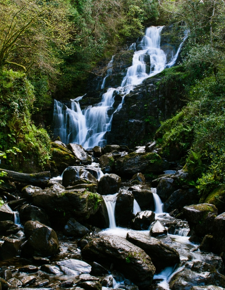 Killarney National Park | Ireland- would love to go here one day!