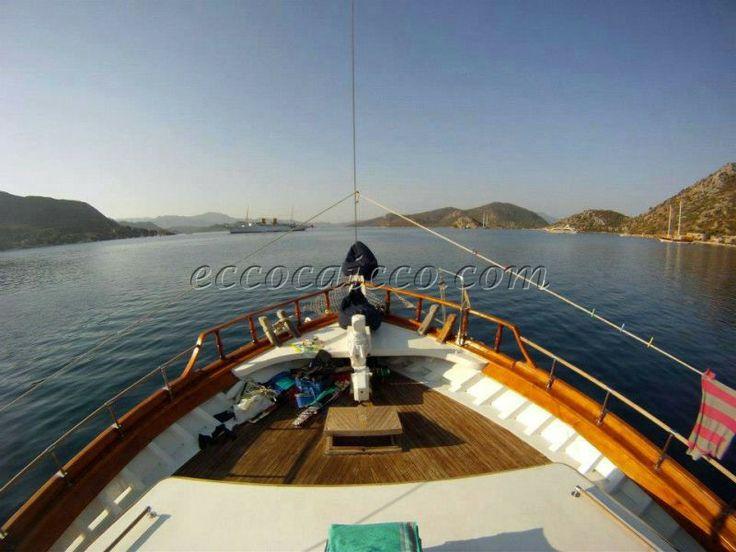 http://www.eccocaicco.com/caicco-atl294.htm