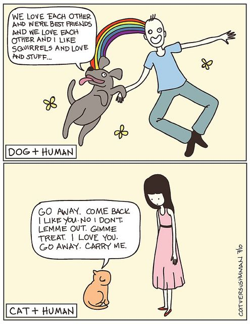 Cats and dogs. #funny: Crazy Cats, I Love Cats, Giggl, Pet, Dogs Cats, So True, Dogs Rules, I Love Dogs, Funnies Stuff