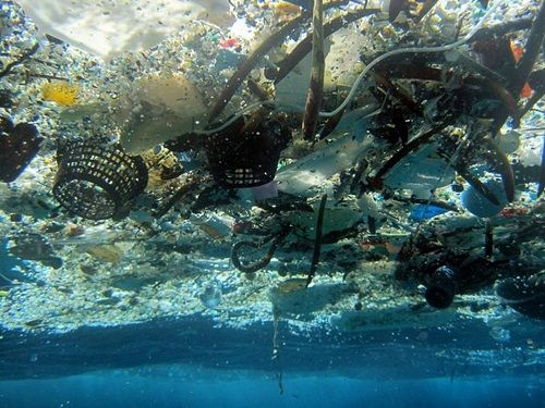 """""""Limpar os mares"""" é a campanha lançada hoje pela ONU, para alertar a sociedade para os danos irreversíveis que estamos a provocar nos mares de todo o mundo"""