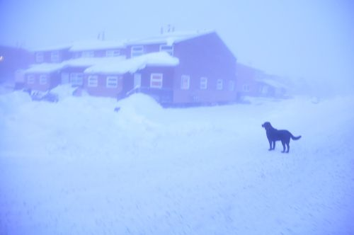 Ice fog at -47 degrees celsius