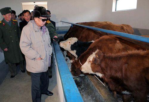 Kim Jong-Il Looking at Things f...