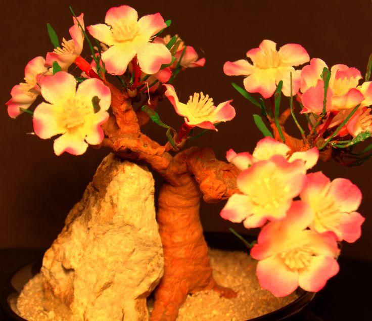 20 besten Montana Rock and Bonsai Sculptures Bilder auf Pinterest ...