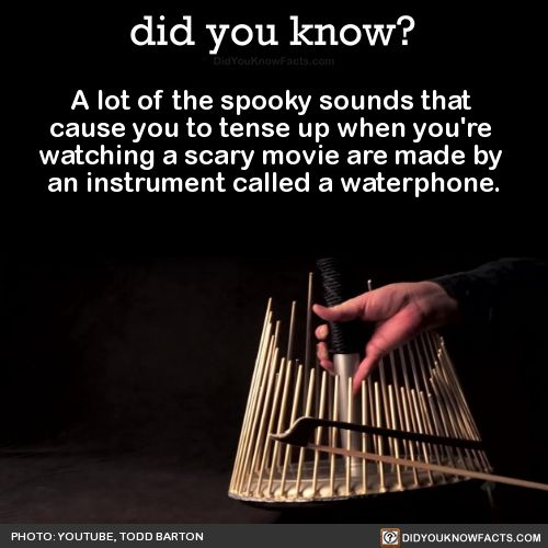 Horror Movie Sounds Instrument Movie Online With Subtitles: Best 25+ Scary Movie Quotes Ideas On Pinterest